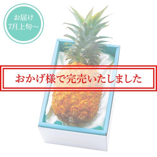 ゴールドバレル1本(パイナップル) No12