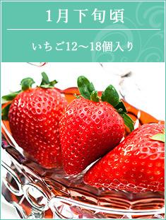 1月下旬頃 静岡県、愛知県産紅ほっぺ12~15個入り