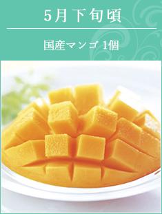 5月下旬頃 宮崎県産マンゴ1個