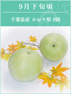 9月下旬頃 千葉県産かおり梨2個