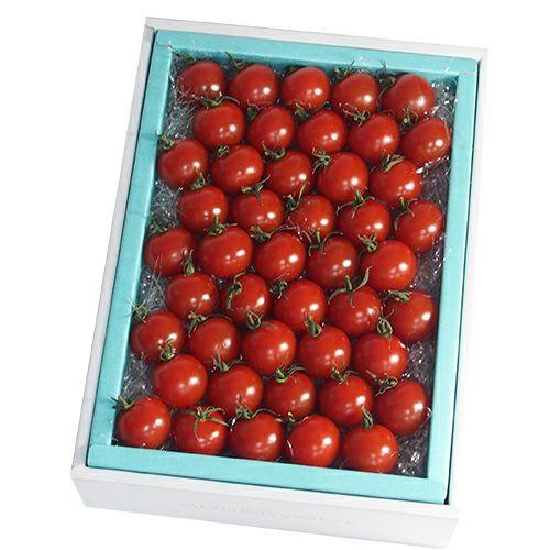 フルーツトマト満杯詰め