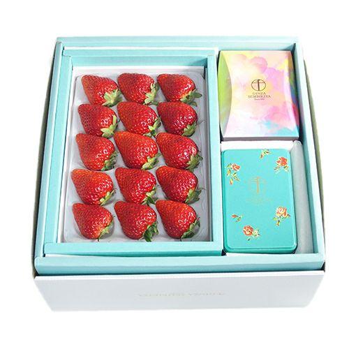 とちおとめ・いちごのチョコレート・ひとくちフルーツゼリー(お届け期間3/12~3/14)